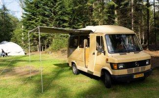 2 pers. Vous souhaitez louer un camping-car Mercedes-Benz à Amsterdam? À partir de 73 € par jour - Goboony